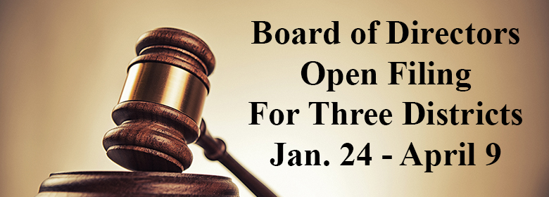 Board Filing Image